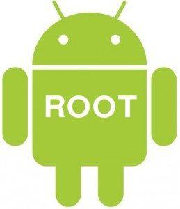 Root-259x300