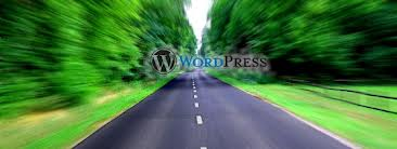 speed-wordpress-up