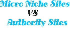Autority Blog vs. Niche Blog
