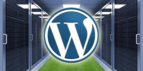 Guide to Choosing the Right Hosting Solution for Your WordPress Website