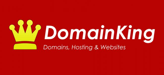 Domainking-logo
