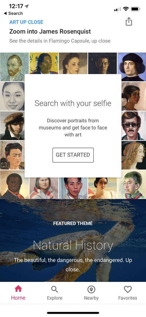 google arts and culture outside the US